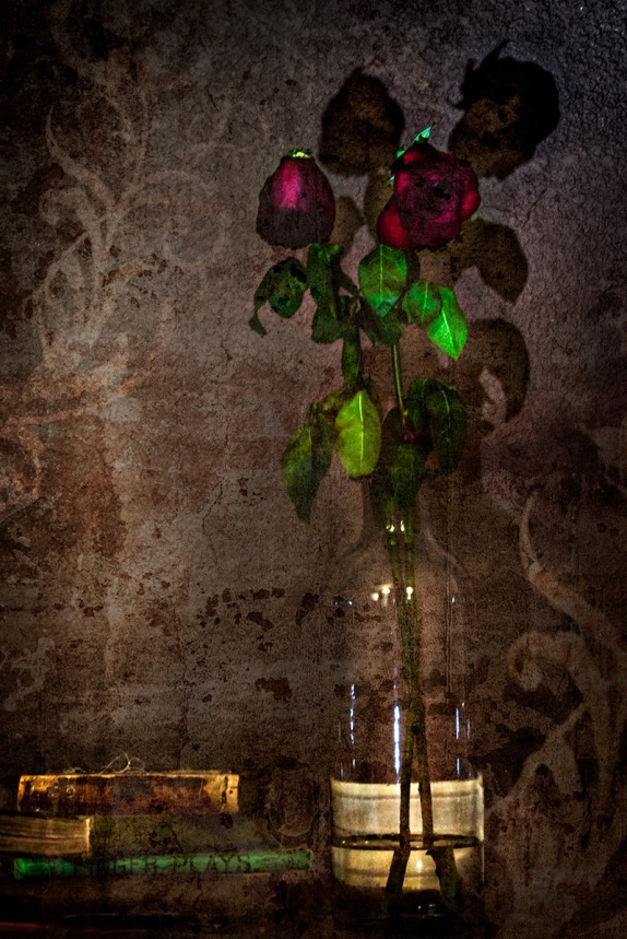 Books and Roses Abstract