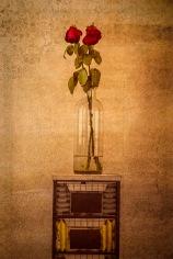 Rose Brocade