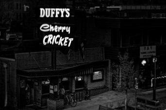 Cherry Cricket: Denver (b/w)