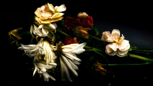 Wedding Song: Abstract Flowers