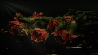 Ballet: Abstract Flowers