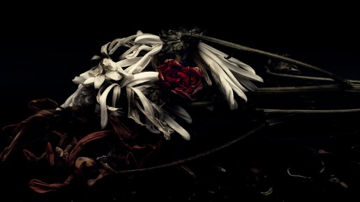 Corpse Bride: Abstract Flowers