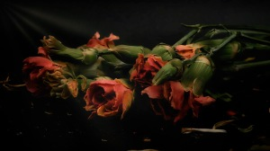 Ballet - faded bouquet